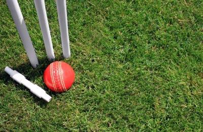 Cricket-SimonHowden