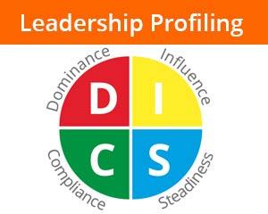 DISC Profiling