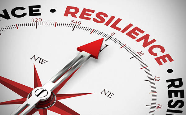 resilience as physical resilience as a concept on a compass